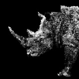 Low Poly Safari Art - Rhino - Black Edition Plakater af Philippe Hugonnard