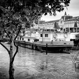 Paris sur Seine Collection - Boats before the Musee d'Orsay III Photographic Print by Philippe Hugonnard