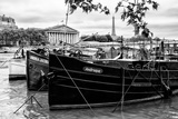 Paris sur Seine Collection - Seine Boats Photographic Print by Philippe Hugonnard