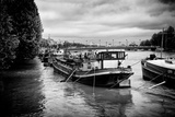 Paris sur Seine Collection - Paris Harbour Photographic Print by Philippe Hugonnard