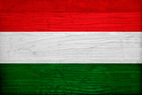 Hungary Flag Design with Wood Patterning - Flags of the World Series Art by Philippe Hugonnard