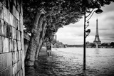 Paris sur Seine Collection - Banks of the Seine River Photographic Print by Philippe Hugonnard
