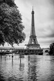 Paris sur Seine Collection - Along the Seine IV Fotografisk tryk af Philippe Hugonnard