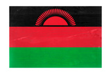 Malawi Flag Design with Wood Patterning - Flags of the World Series Print by Philippe Hugonnard