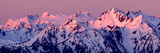 Alpenglow on Mt. Olympus Posters by Douglas Taylor