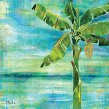 Banana Lagoon II Art by Paul Brent