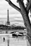 Paris sur Seine Collection - Parisian Trip Photographic Print by Philippe Hugonnard