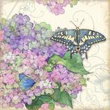 Hydrangea & Butterflies Prints by Julie Paton