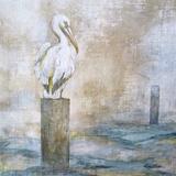 Coastal Birds I Posters par Paula Giltner