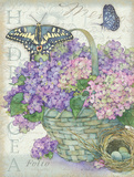 Hydrangea Folio Prints by Julie Paton