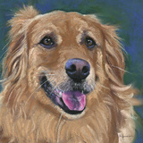 Golden Retreiver Posters by Becky Golubski