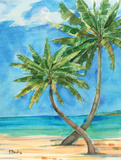 Palmas Belize II Prints by Paul Brent