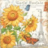 Carte Postale Sunflowers II Print by Julie Paton