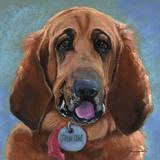 Hound Dog Prints by Becky Golubski