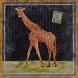 Giraffe Kunstdrucke von Lisa Ven Vertloh