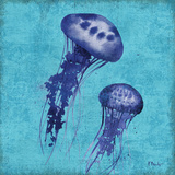 Indigo Jellyfish I Prints by Paul Brent