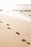 Beach Walk Posters by Karyn Millet