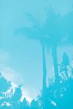 Beverly Hills Pool III Posters by Karyn Millet
