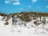 Sand Dunes II Art by Todd Williams