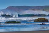 Waves in Cayucos II Posters by Lee Peterson