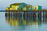 Half Moon Bay Pier Prints by Lee Peterson
