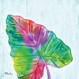 Prism Palm III Prints by Paul Brent