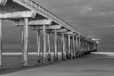 Scripps Pier BW I Print by Lee Peterson