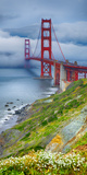Golden Gate Bridge IV Prints by Rita Crane