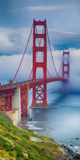 Golden Gate Bridge III Posters by Rita Crane