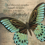 Butterfly II Posters by Kimberly Poloson