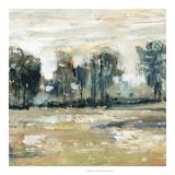 Julie Silver - Tree Shade I *Exclusive* Digitálně vytištěná reprodukce