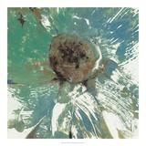 Julie Silver - Water Floral II *Exclusive* Digitálně vytištěná reprodukce