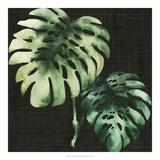Julie Silver - Tropical Growth II *Exclusive* Digitálně vytištěná reprodukce