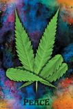 Peace Pot Leaf Poster