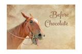 Before Chocolate Poster by Romona Murdock