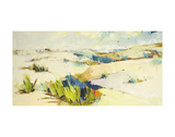 Dunes LV Prints by Kim McAninch