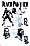 Black Panther No. 1 Cover Art Posters by Brian Stelfreeze