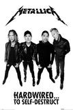 Metallica- Hardwired Band Members Fotografie