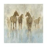 Hästar Affischer av Randy Hibberd