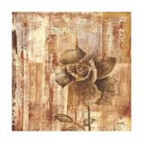 Rust Rose II Art by Carol Black
