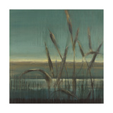 Cattails Prints by Terri Burris