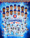 Chicago Cubs 2016 World Series Champions Composite Photo