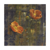 Iceland Poppies I Posters by Carol Black