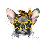 French Bulldog. Cute Puppy Dog. Watercolor Puppy Dog Illustration. French Bulldog Breed. Unusual Il Posters tekijänä Fayankova Alena