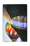 Hot Air Balloons Side by Side Prints by Lillis Werder