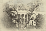 White House Sepia Photo by Lillis Werder