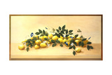 Lemons and Blossoms Prints by Hampton Hall