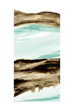 Driftwood 5 Posters by Chris Paschke