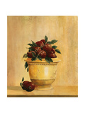 Pomegranetes Giclee Print by Hampton Hall