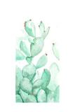 Turquoise Desert 2 Print by Allyson Fukushima